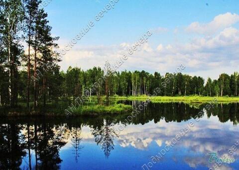 Ярославское ш. 47 км от МКАД, Луговая, Участок 7 сот. - Фото 5