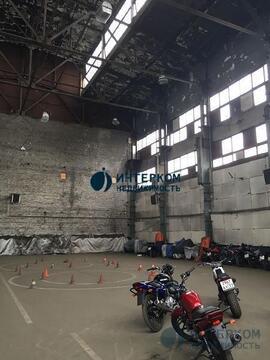 Сдается помещение холодного склада площадью 300 м2 по ценеуб - Фото 1