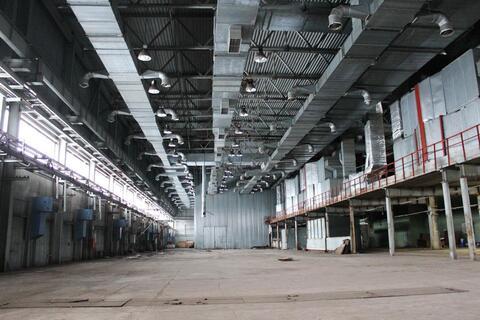 Сдам производственный цех 3500 кв.м. - Фото 1