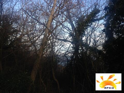 Продается земельный участок в окружений хвойного леса! - Фото 5