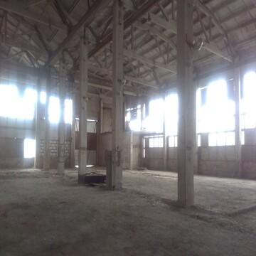 Аренда производства 1500 кв м в Струнино - Фото 3