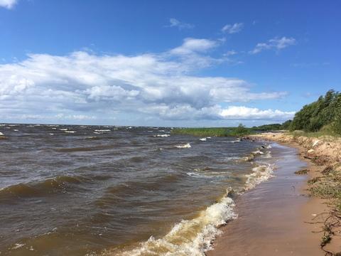 Первая линия Чудского озера - Фото 2