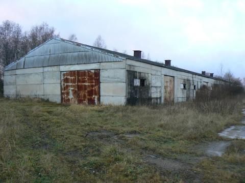 Комплекс объектов промышленного назначения общ. пл. 4518 кв.м. + 5 га - Фото 3
