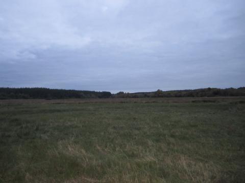Участок под ИЖС в селе Беленькое - Фото 2