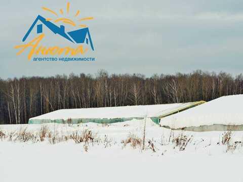 Продается тепличное хозяйство в деревне Митяево Боровского района Калу - Фото 4