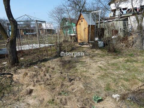 СНТ Ногина, участок 4 сотки - Фото 3