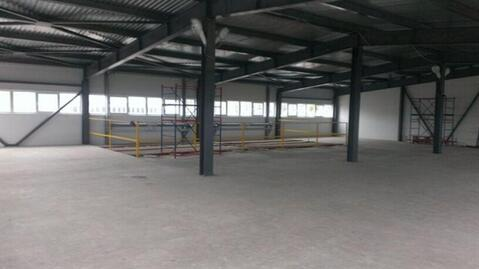Сдам производственное помещение 1000 кв.м, м. Парнас - Фото 4
