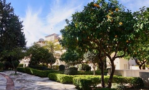 Впечатляющий трехкомнатный апартамент с большой верандой в Пафосе - Фото 4