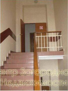 Отдельно стоящее здание, особняк, Белорусская, 1100 кв.м, класс B. . - Фото 5