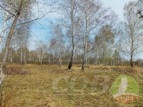 Продажа участка, Богандинский, Тюменский район - Фото 5