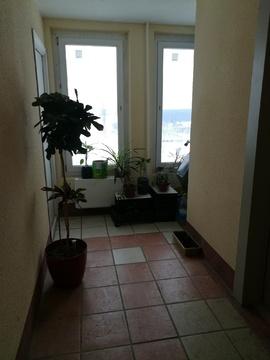 Продам 1-комнатную квартиру в мкр. Красная Горка. - Фото 5