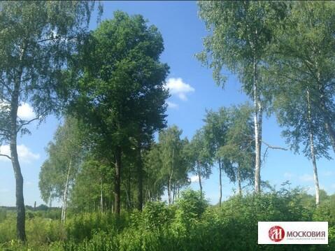 Лесной участок 18.4 соток. Коммуникации, прописка Москва. 30 км от МКАД - Фото 4