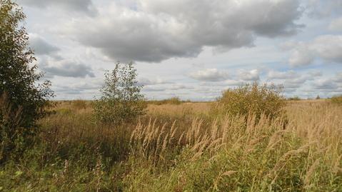 Земельный участок 5,67 Га рядом с деревней Сорокино - Фото 3