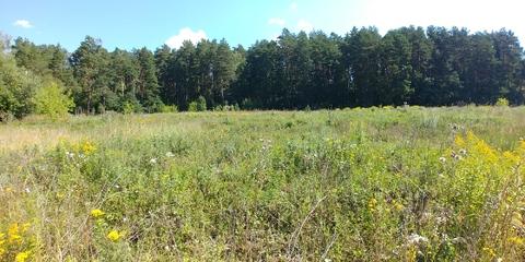 Земельный участок 14 соток в сосновом бору на берегу реки д. Айдарово - Фото 1