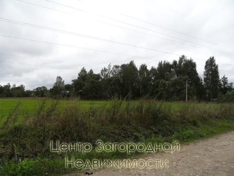 Участок, Ярославское ш, 35 км от МКАД, Цернское д, д.Цернское. . - Фото 4