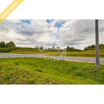 Продажа земельного участка 22 сот в д. Пелдожа - Фото 3