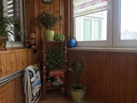 Продается Двухкомн. кв. г.Москва, Бескудниковский б-р, 58к1 - Фото 3