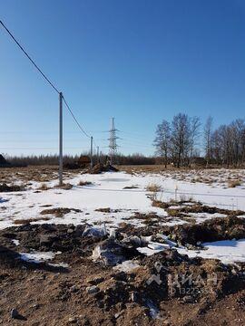 Продажа участка, Псков, Ул. Нестурха - Фото 1