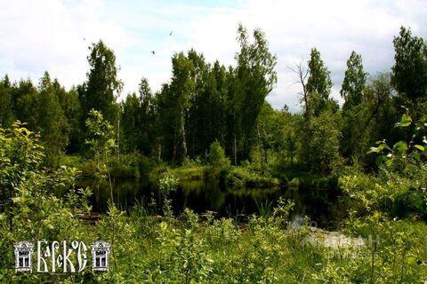 Аренда дома посуточно, Костромской район - Фото 2
