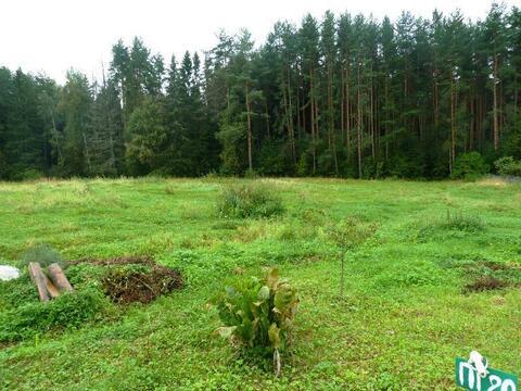 Продается участок 7 соток в поселке Новое-Гришино. - Фото 4