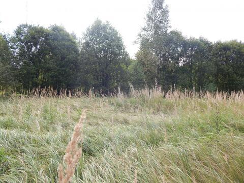 Участок 15 соток в д.Бражниково в 1 км от Рузского вдх. - Фото 3