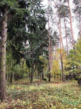 Минское ш. 28 км от МКАД, Голицыно, Участок 18 сот. - Фото 1