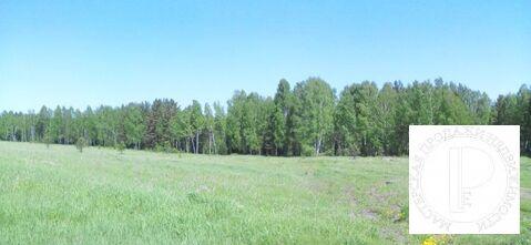 Участок площадью 4,3 гектара первая линия федеральной трассы Р-255 - Фото 4