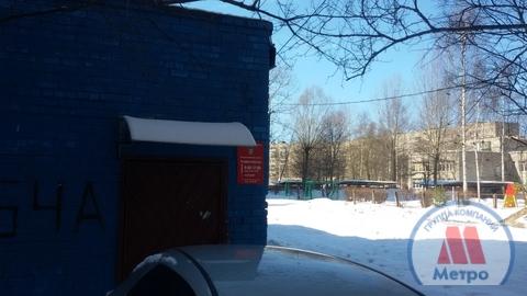 Коммерческая недвижимость, ул. Елены Колесовой, д.54 к.А - Фото 3