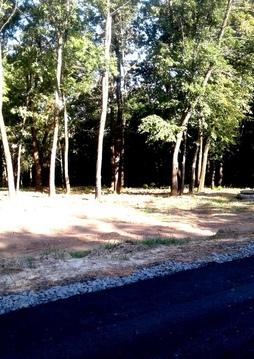 Участки со своим лесом в городе - Фото 3