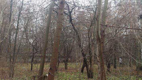 Участок 26 сот. , Ярославское ш, 15 км. от МКАД. - Фото 1