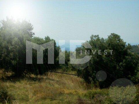 Зем. участок Халкидики Кассандра - Фото 1