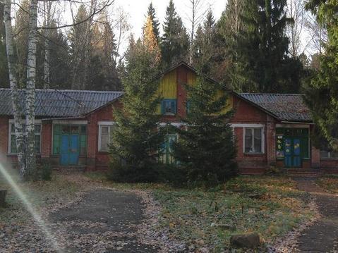 Детский лагерь 12 Га - Фото 2