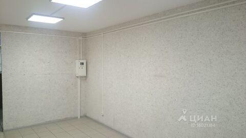 Аренда торгового помещения, Барнаул, Улица Сергея Ускова - Фото 2