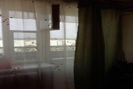 Продажа квартиры, Минеральные Воды, Ул. Дружбы - Фото 2