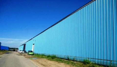 Складской комплекс 7282 в Пушкинском р-не 17 км от МКАД - Фото 3