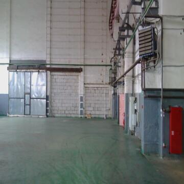 Сдам производственное помещение 2800 кв.м. - Фото 4