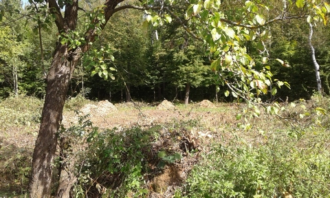 Продается земельный участок ИЖС в Белкино - Фото 3