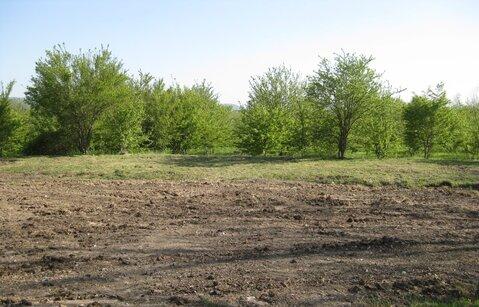 Продам в ст. Григорьевской земельный участок - Фото 3