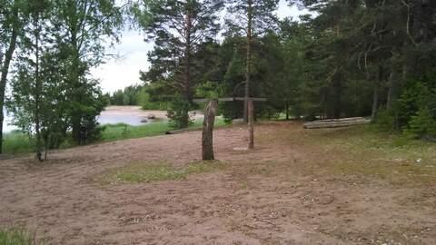 Продается земля 1330 соток, поселок Большой Бор - Фото 2
