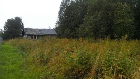 Продам дом в п.Кузнечное(Приозерский р-н) - Фото 5