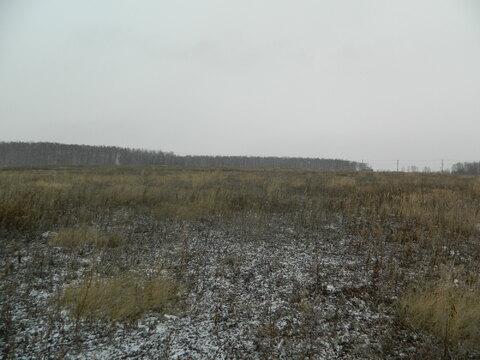 Земельный участок п Северный, Сосновский р-он - Фото 5
