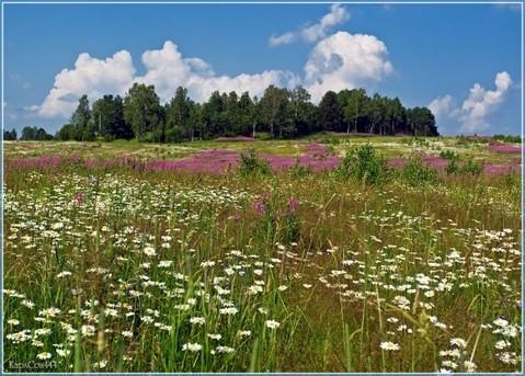 Орехово + 5 км , д.Иваново - Фото 2