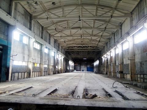 Производственное помещение Орехово-Зуевский р-н, Пригородный п - Фото 1