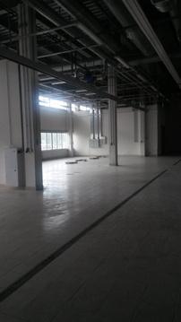 Продажа торгового помещения, м. Девяткино, Суздальский пр-кт. - Фото 5