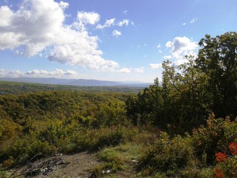 Купить земельный участок 12 сот. в Новороссийске - Фото 1