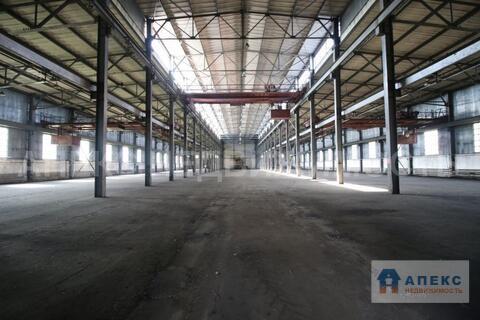 Аренда помещения пл. 4700 м2 под склад, производство, , офис и склад, . - Фото 2