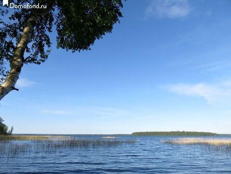 Чудесный участок рядом с озером Суходольским - Фото 3