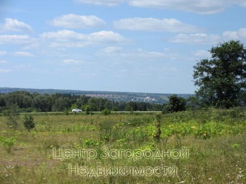 Участок, Дмитровское ш, 40 км от МКАД, Минеево. Дмитровское шоссе 41 . - Фото 4