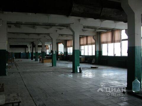 Помещение свободного назначения в Московская область, Домодедово . - Фото 2