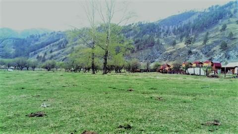 Продажа участка, Элекмонар, Чемальский район - Фото 4
